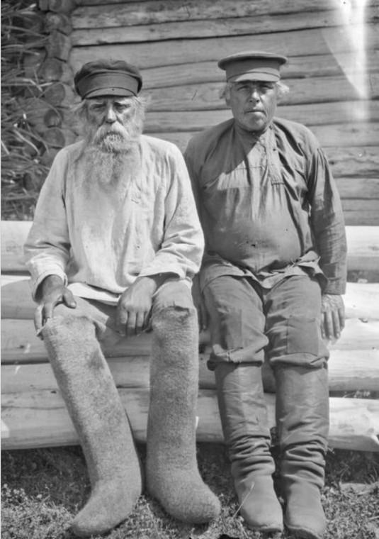 Два брата старика